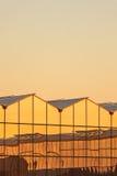 在日落期间的荷兰温室 库存照片