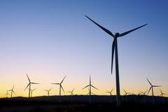 在日落期间的风力场 库存图片