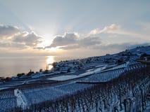 在日落期间, Lavaux在雪包括 免版税库存照片
