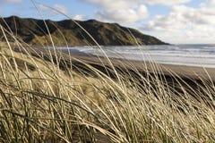 在日落海滩的沙丘 免版税库存照片