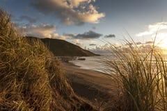 在日落海滩的沙丘 库存图片