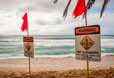 在日落海滩的高海浪警告 库存照片