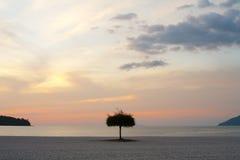 在日落海滩的伞 图库摄影