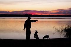 在日落湖的男孩和狗剪影 库存图片