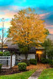在日落焕发期间被点燃的秋叶 库存照片