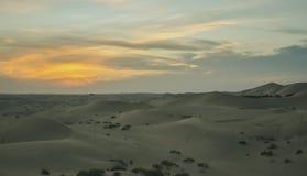 在日落的不尽的沙漠沙丘在阿布扎比附近 图库摄影