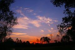 在日落的五颜六色的天空和森林剪影 库存图片