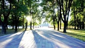 在日落的公园胡同 免版税库存图片