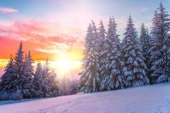 在日落的冬天横向。 保加利亚 免版税库存图片