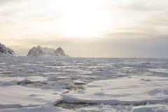 在日落的冰原,南极洲 免版税库存照片