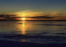 在日落的冻Barnegat海湾 库存图片