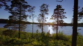 在日落的出色的意见在湖在夏日 聚合在天际的湖和天空 股票录像