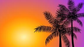 在日落的可可椰子树 向量例证