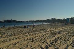 在日落的圣塔巴巴拉海滩 苹果覆盖花横向草甸本质星期日结构树 库存照片