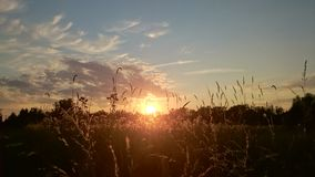 在日落的域 库存图片
