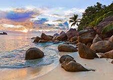 在日落的塞舌尔群岛热带海滩 免版税库存照片