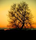 在日落的夜颜色 图库摄影