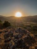 在日落的大太阳 免版税库存图片
