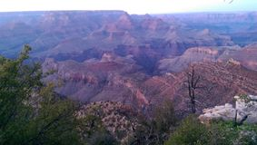 在日落的大峡谷 免版税库存图片