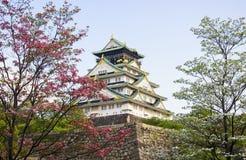 在日落的大阪城堡与樱花 日本春天美好的场面 库存图片