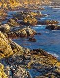 在日落的大sur海岸 图库摄影