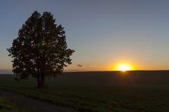 在日落的天空 图库摄影