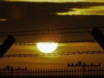 在日落的安全性防护 免版税库存照片