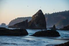 在日落的岩石海岸,俄勒冈 库存图片