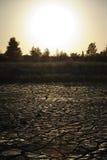 在日落的干泥 免版税图库摄影