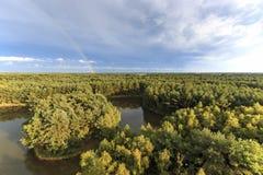 在日落的彩虹在森林在自然公园叫Lommeles撒哈拉大沙漠在比利时 免版税图库摄影