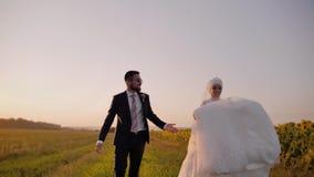 在日落的惊人射击 在爱奔跑的一对夫妇沿向日葵的领域反对美好的日落的 股票录像