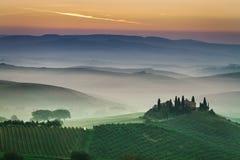 在日落的惊人的有雾的绿色领域在托斯卡纳,意大利 免版税库存照片
