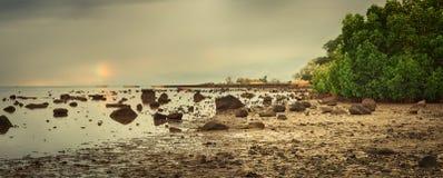 在日落的惊人的风景 毛里求斯 全景 免版税库存图片