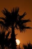 在日落的掌上型计算机 图库摄影