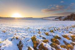 在日落的斯诺伊领域在蓝天下 免版税库存图片