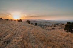 在日落的新近地被切的麦子的领域 库存照片