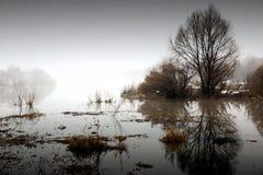在日落的春天雾 库存照片