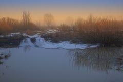 在日落的春天雾 免版税库存图片