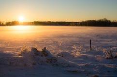 在日落的晚上光在爱沙尼亚语冬天 免版税库存图片