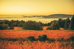 在日落的有雾的风景 免版税库存照片
