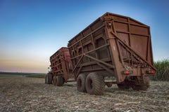 在日落的机械收获的甘蔗领域在圣保罗巴西 库存图片