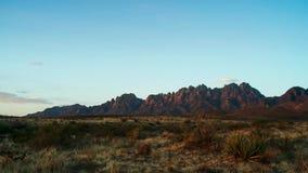 在日落的柱仙人掌在迷信山前面 在菲尼斯附近的Sonoran沙漠 免版税库存图片