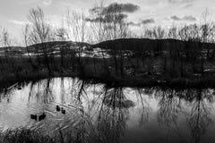 在日落的树反射在Colfiorito的翁布里亚,机智一个池塘 图库摄影