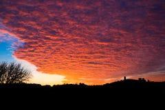 在日落的桔子 库存图片