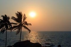 在日落的棕榈树剪影 免版税库存图片