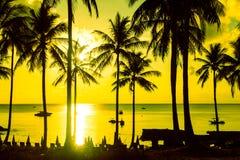 在日落的棕榈树剪影在热带海岛上 库存照片