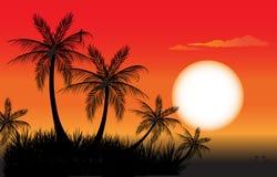 在日落的棕榈树 向量例证