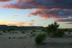 在日落的沙丘 图库摄影