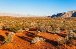 在日落的沙漠,内华达 免版税库存照片