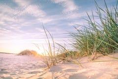 在日落的沙滩 免版税图库摄影